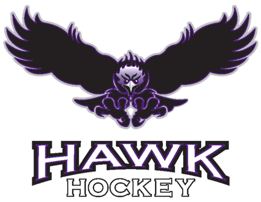 Hawk transparent - Copy